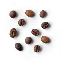 Ingrediente_Café
